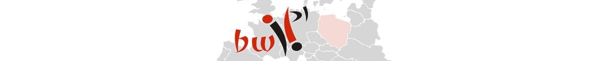 Brzeska Witryna Internetowa